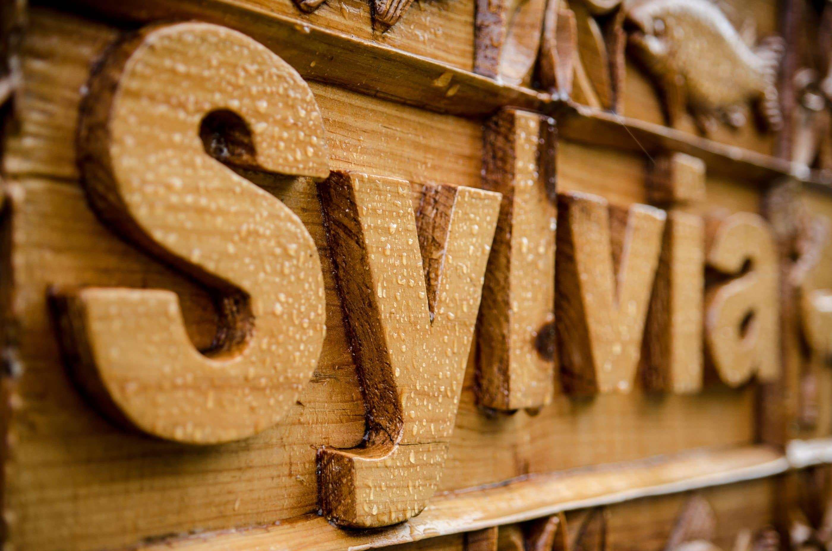 Hand carved wooden sign for Sylvia log cabin